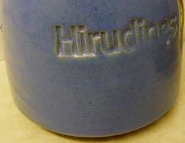 hirudines.jpg